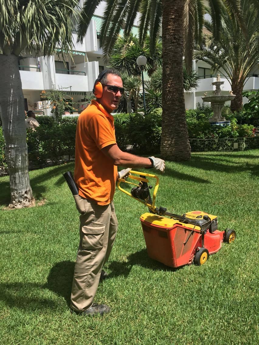 mantenimiento de jardines en Gran Canaria