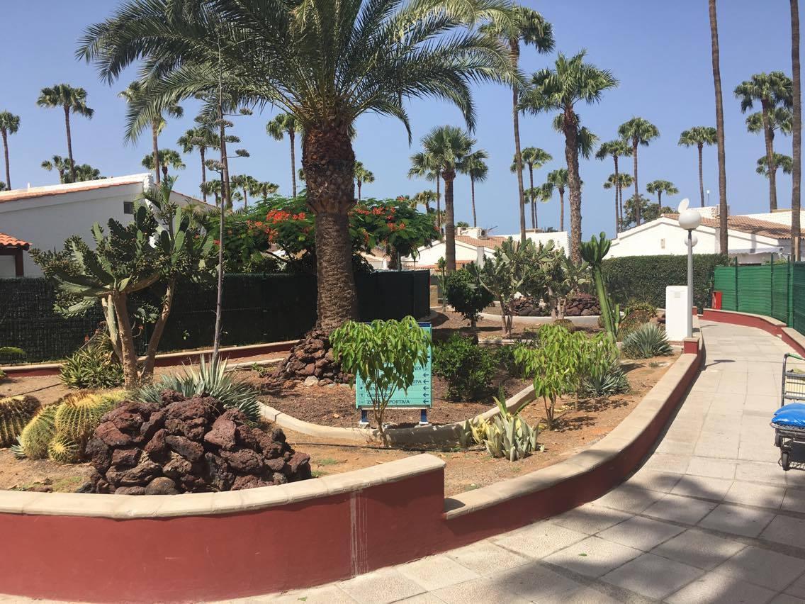 jardin de zona comun