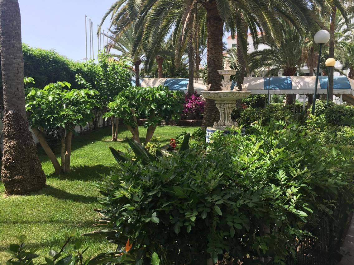 Mantenimiento de jardines para empresas y particulares for Mantenimiento de jardines